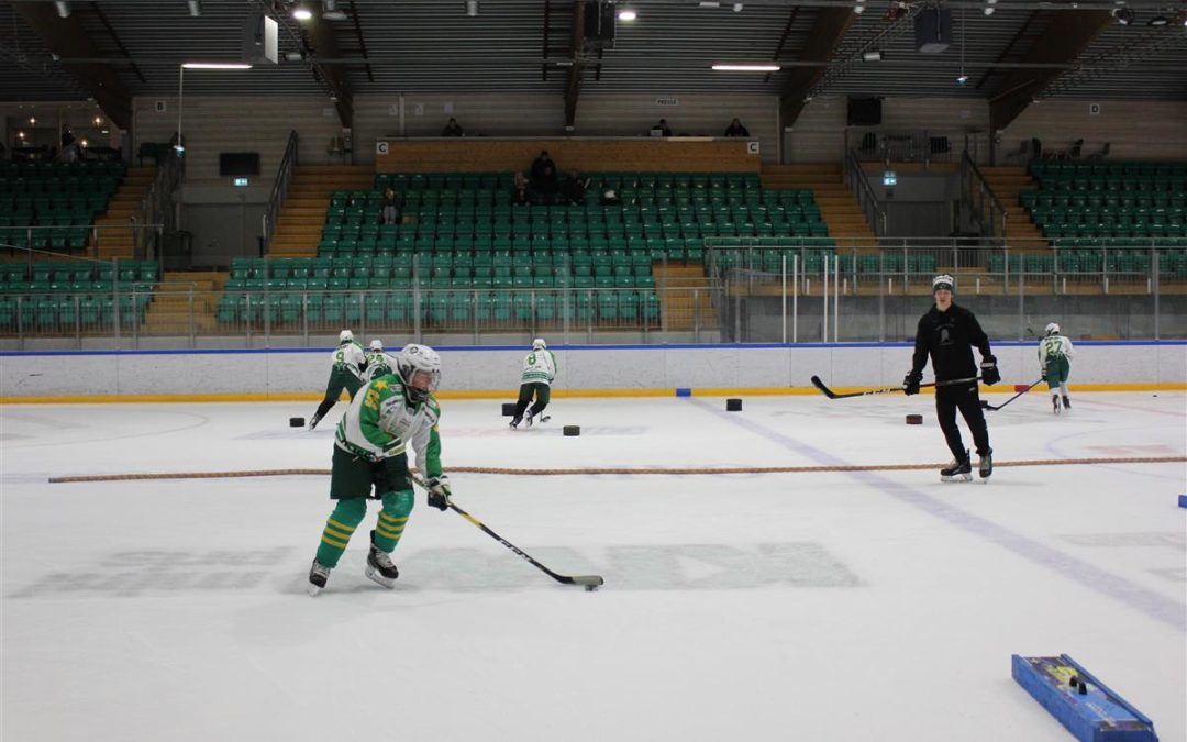 Gruppeinndeling og masterplan for hockeycamp uke 32